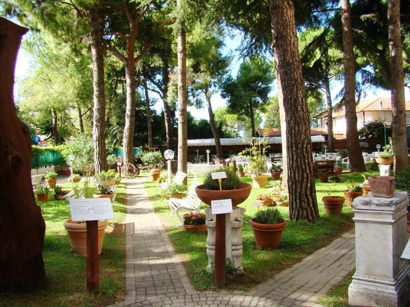 Parco dei Pini (1)